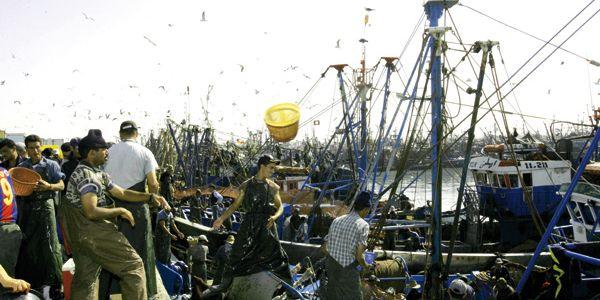 باش ماتضرر … حزب إسباني يدعو حكومته للضغط على الاتحاد الأوروبي لتجديد اتفاق الصيد مع المغرب