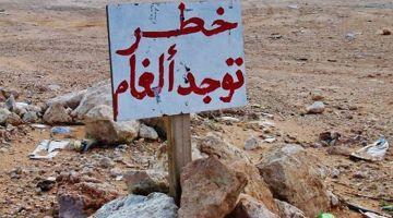 """قوات """"المارينز"""" الأمريكية كيدربو قوات عسكرية مغربية على الألغام"""