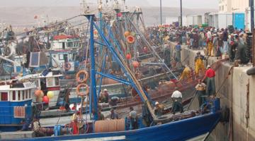 البوليساريو كتزاوگ باش يتأجل تنفيذ الإتفاقية الفلاحية بين الإتحاد الأوروبي والمغرب