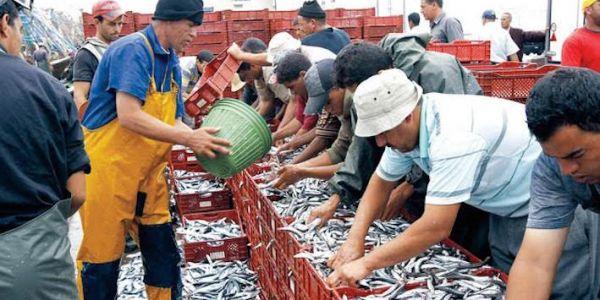حصري ها وقتاش اجتماع الإتحاد الأوروبي مع المنتخبين والجمعيات غير الحكومية دالصحرا على ود اتفاقية الفلاحة والصيد البحري+ الوثيقة