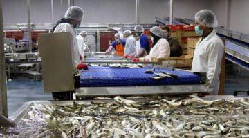ثورة فالقطاع البحري. أخنوش تگعد لمهربي الصيد غير القانوني بـ 3 إجراءات