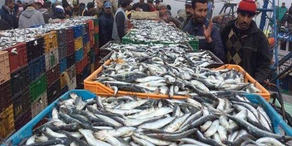 اتفاقية الصيد البحري مع المغرب على أجندة وزراء الزراعة والصيد البحري الأوروبيين