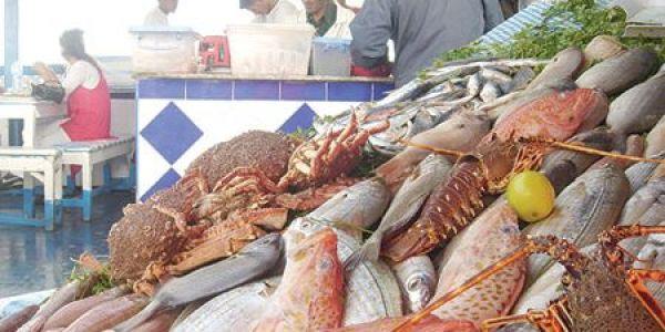 على سلامتكم ملي اعترفتو: الحكومة تقر بارتفاع أسعار الأسماك فهاد المدن