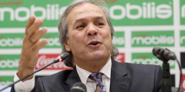 إقالة رابح ماجر من تدريب منتخب الجزائر