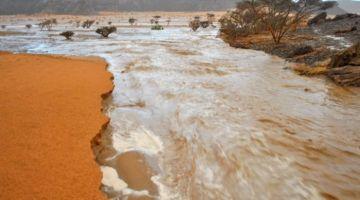 ها شحال من واحد مات فموريتانيا بسباب الشتا اللّي صبات بزايد فشمال البلاد