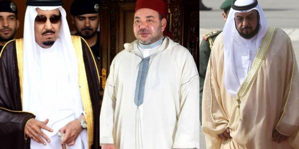 الامارات: مشيد بجهود المغرب لايجاد حل سياسي لقضية الصحراء