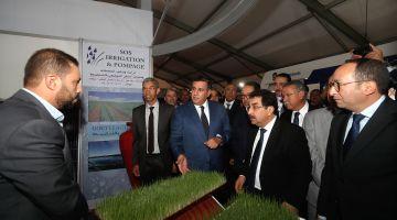 افتتاح النسخة الثانية من المعرض الوطني  لسلالة الصردي بسطات