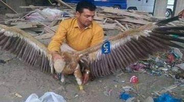"""الجيش اليمني """"اعتقل """" نسر حيث كايتجسس لصالح الحوثيين"""