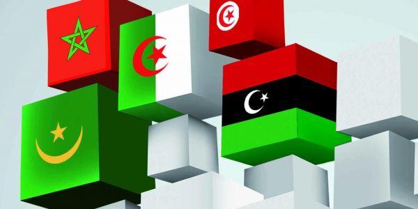 """الرئيس التونسي الأسبق منصف المرزوقي: """"الفيروس الإماراتي"""" يترصد بتونس والجزائر والمغرب وموريتانيا بعد تورطه في تدمير ليبيا"""