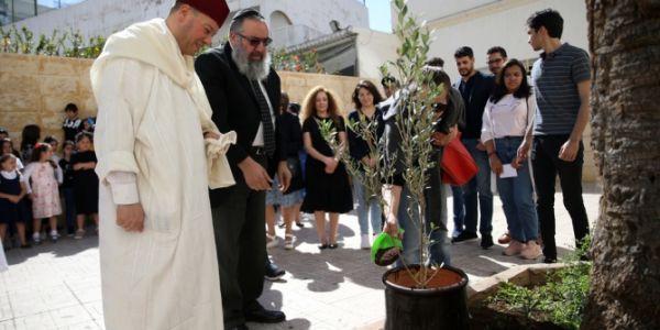 مبادرة التسامح.. مغاربة غرسو ثلاثة ديال شجرات الزيتون أمام كنيسة وكنيس وجامع بكازا