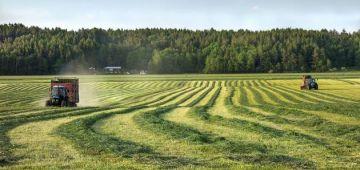 أخنوش: تزرعات 91 ألف هكتار من مساحات الخضراوات فذروة الحجر الصحي وبطاطا وماطيشا والبصلة تجاوزات المساحات المبرمجة