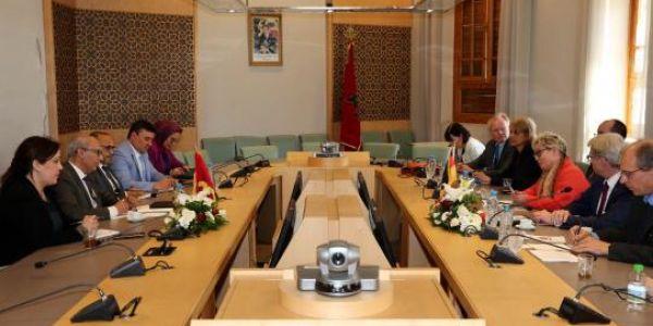 لجنة الخارجية والدفاع الوطني غادي دير اجتماع لتدارس مستجدات النزاع فالصحرا