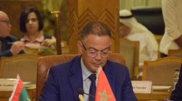 فوزي لقجع فاجتماع وزراء المالية: دعم الفلسطينين واجب