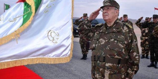 گايد صالح بوجهو گاصح: قيادة الجيش ماعندهاش طموح سياسي