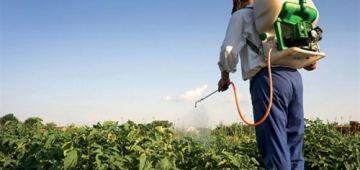 وزارة الفلاحة: الإنتاج الفلاحي مستمر بشكل عادي والسوق فيها كَاع المنتجات الفلاحية والغذائية الكافية وبثمن مناسب