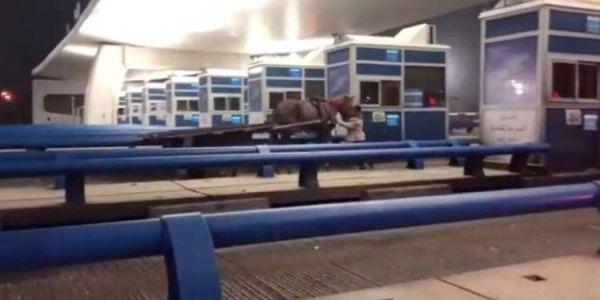 فيديو لكروسة فمحطة للأداء  فلوطوروت منوض الصداع ف الانترنيت