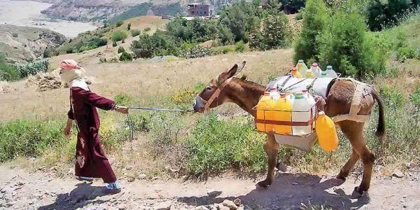 أزمة الماء خسرات فرحة العيد على مناطق بسوس