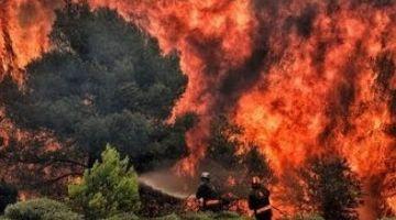 الجمعية اتاهمات عامل الدريوش بحمايتها لبلدة وزير الداخلية وسمحات فأزيد من الف هكتار ديال الغابة كتحرق
