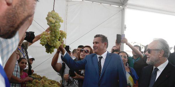 مخطط المغرب الأخضر.. أخنوش: كنا عارفين غادي يحقق تنمية مستدامة والنتائج المسجلة مهمة