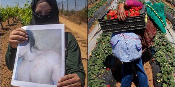 """مجبدوش """"الاعتداءات"""" على عاملات الفريز..حكومتي مدريد والرباط: العام زين"""