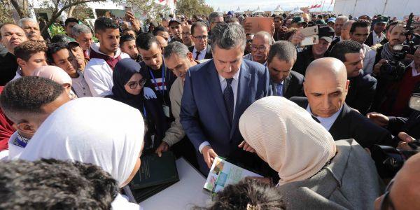 اخنوش: مساحات زراعة أشجار الزيتون ارتفعت بفضل مخطط المغرب الأخضر