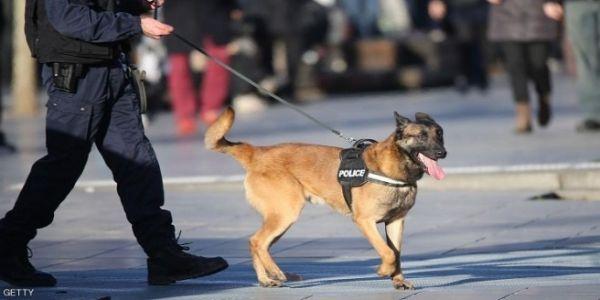 ضابط دالبوليس ف ميريكان استقال بعدما ناض عليه الصداع حيت تكرفس على كلب ديال السربيس– فيديو