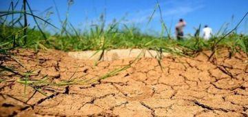 الأرصاد الجوية: العام الفايت من بين السنوات الأكثر جفافا فبلادنا من 1981 و كان ليه أثر على الإنتاج الفلاحي
