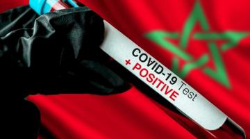 """التضامن ضد """"كورونا""""مستمر..الأطباء البياطرة ساهمو بمليون و200 ألف درهم"""