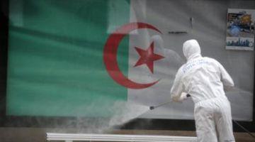 """الدزاير و """"كورونا"""".. 230 إصابة جديدة بالفيروس و 4 ماتو و 185 تشفاو"""