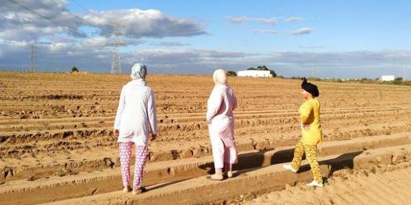 أزمة حقيقية تقدر تبان ديال 7200 مغربية لي فمزارع الفريز فويلبا الاسبانية بسباب رفض الحكومة ترجعهم