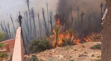 العافية اللي شعلات بواحة آيت منصور.. المياه والغابات استعنات بمروحيات والمساحة اللّي كلاتها العافية وصلات لـ34 هكتار