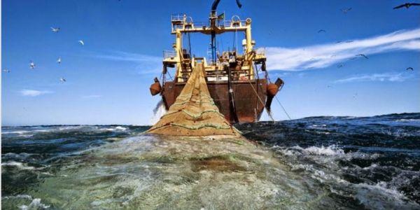 الرئيس الموريتاني السابق مزبلها.. شركة تابعة لو متورطة فالإحتيال وتهريب آلاف الأطنان ديال الحوت