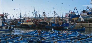 صحاب مراكب الصيد البحري فالعيون: إغلاق ميناء العيون ماكاينش