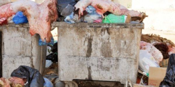 شركة النظافة فكازا جمعات 28 ألف طن ديال الزبل فهذ 3 أيام دالعيد
