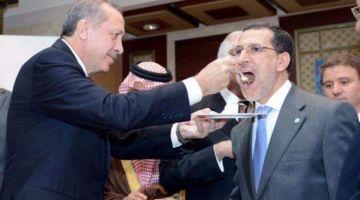 ساعات قاصحة على خدام قطر وتركيا من لمغاربة.. اعلان الامارات فتح قنصلية فالعيونصطاهم