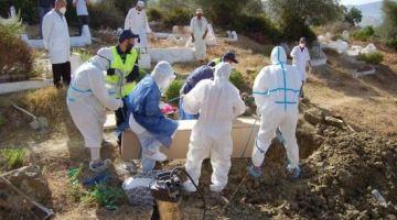 """منظمة الصحة العالمية: 2 مليون وفاة """"محتملة"""" بكورونا الى مافقنتش من الگلبة ودرنا اللازم"""