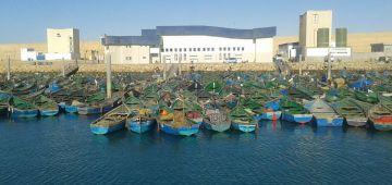 ميناء بوجدور غادي يتعزز بقوارب جديدة للصيد الساحلي وبوحدات تصبير