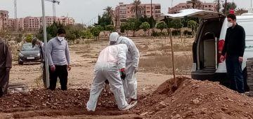 اليوم كورونا قتلات 26 واحد دقة وحدة فكازا.. و564 براو فالشرق