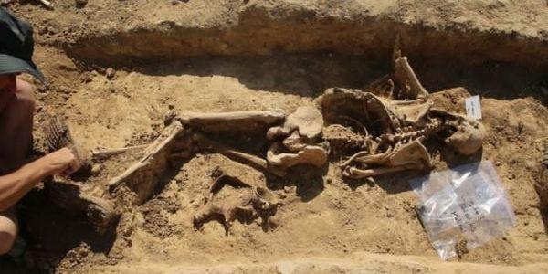 لقاو جثث 14 عسكري مغربي حاربو لالمان فالحرب العالمية اللولة ففرانسا – تصاور