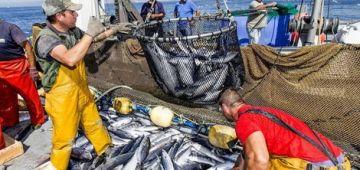 قضية الصيد البحري مع الاتحاد الاوروبي.. هاد الصيف غاتحكم المحكمة الاوروبية فالموضوع