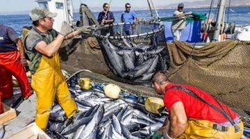 المغرب جدد اتفاقيتو مع روسيا لاستغلال الموارد السمكية
