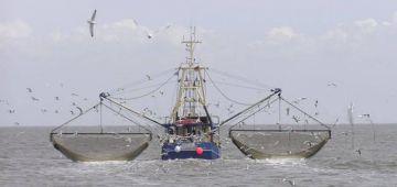 خافت من نهب الثروة البحرية.. الحكومة دارت شروط جديدة للسفن الروسية لي كتصيد فالمناطق الخالصة