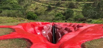 عمل فني على شكل العضو التناسلي دالعيالات منوّض روينة فالبرازيل