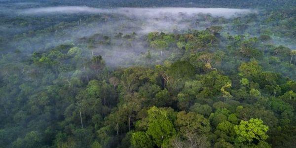 دراسة: أكثر من 96 فالمية ديال الأراضي فيها مشاكل بيئية خطيرة كتزيد تهدد الحياة فوق كوكب الأرض