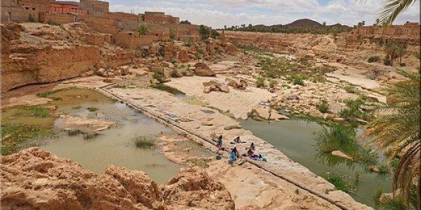 قرار عاملي: إعلان طاطا منطقة متضررة بالجفاف