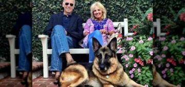 الكلب ديال جو بايدن غادي يزيدو يدربوه باش مايبقاش يعض الناس وسط البيت الأبيض!