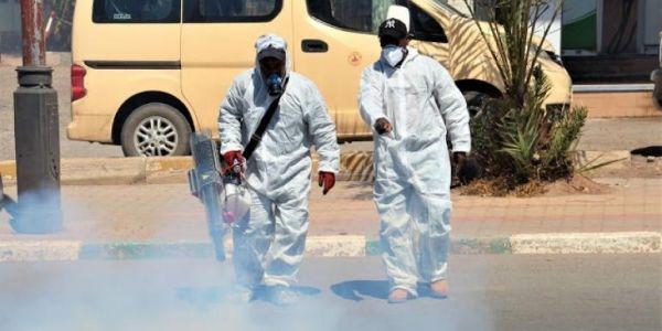 اللجنة العلمية: ظهور أول سلالة مغربية لفيروس كورونا بورزازات و25 طفرة فالمملكة