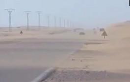 الرياح الرملية بالعيون توقف حركة الصيد البحري منذ ثلاثة أيام + فيديو