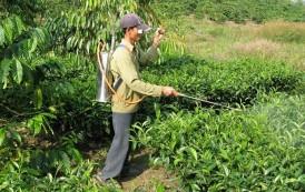 مبيدات مسرطنة في حقول المغرب