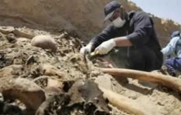 لقاو جوج طروفة. أعضاء بشرية تستنفر أمن مارتيل بعد العثور على رجلي جثة مجهولة في أحد مجاري المياه